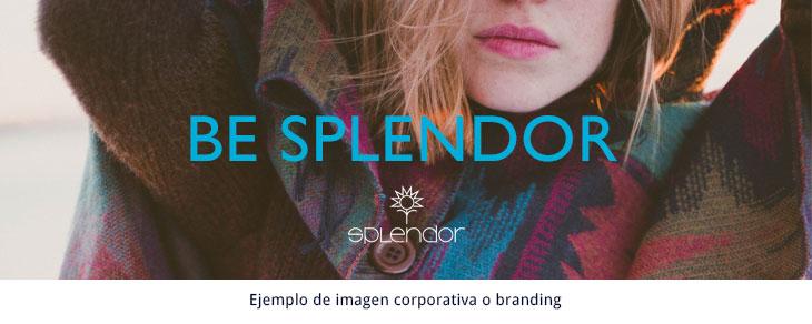 ejemplo de imagen corporativa o branding