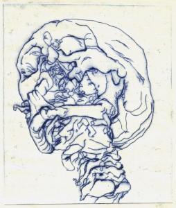 Grabado, Cráneo, venta cuadros óleo