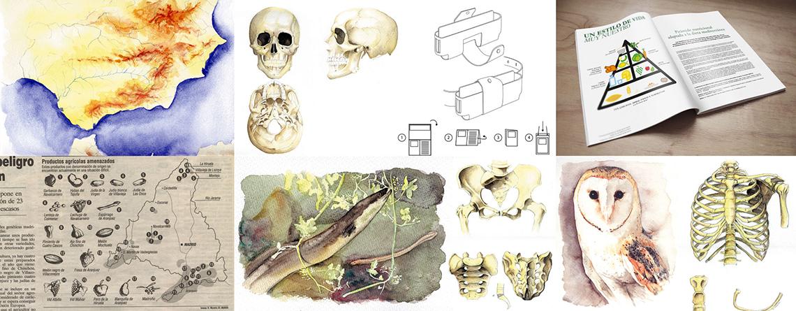 Ilustrador temática científica